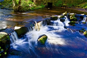 The River Rivelin